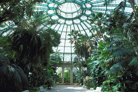 Serres royales de laeken for Ecran de jardin belgique